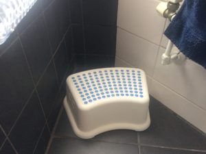 Inspiration: dots on potty trainer step